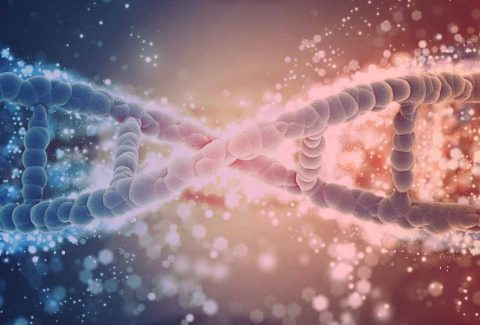 Can Your Genes Affect Your Financial Success?